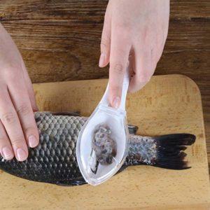 Fish Scraper 1